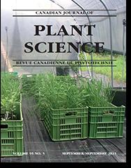 cover_plant_sm